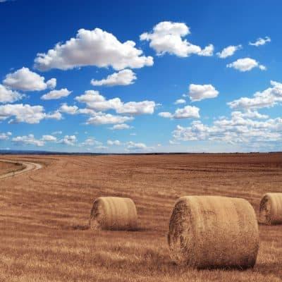 """Z prázdnin na venkově : """"Proč je vesnická idylka cool"""""""