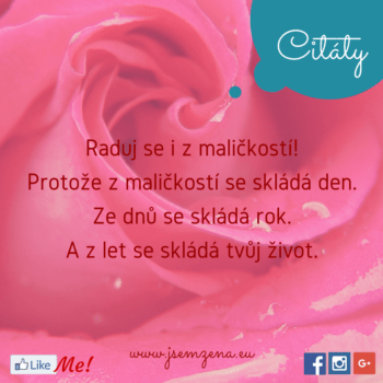 Copy of Citát (23)
