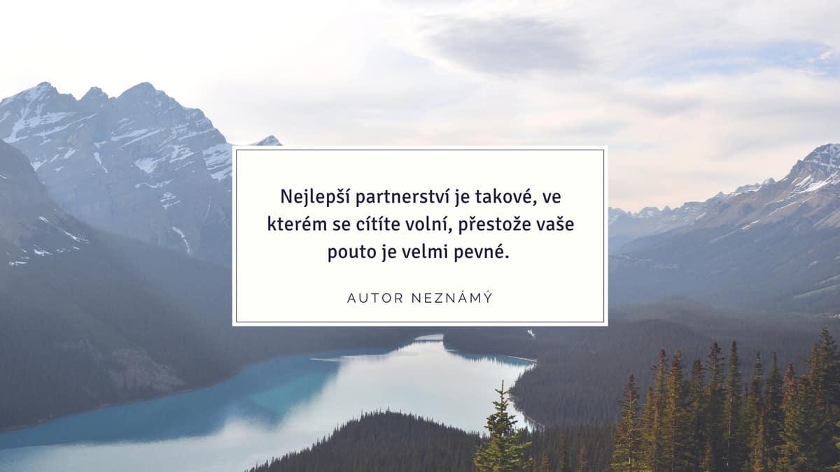 ideální partner