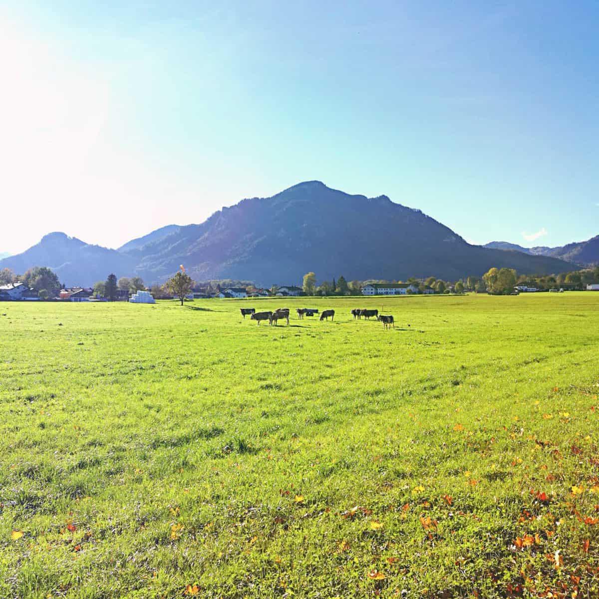 výlet v Bavorsku 4
