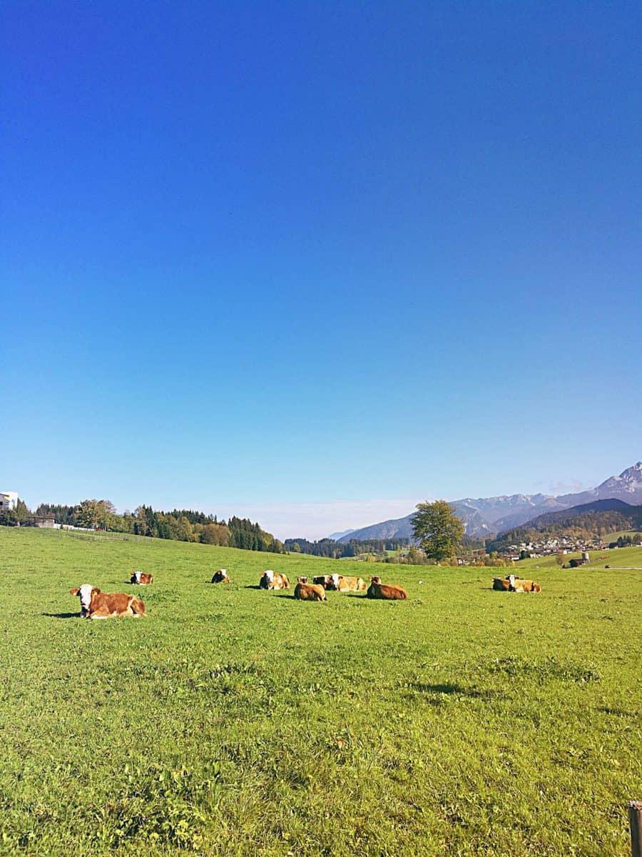 výlet v Bavorsku 2