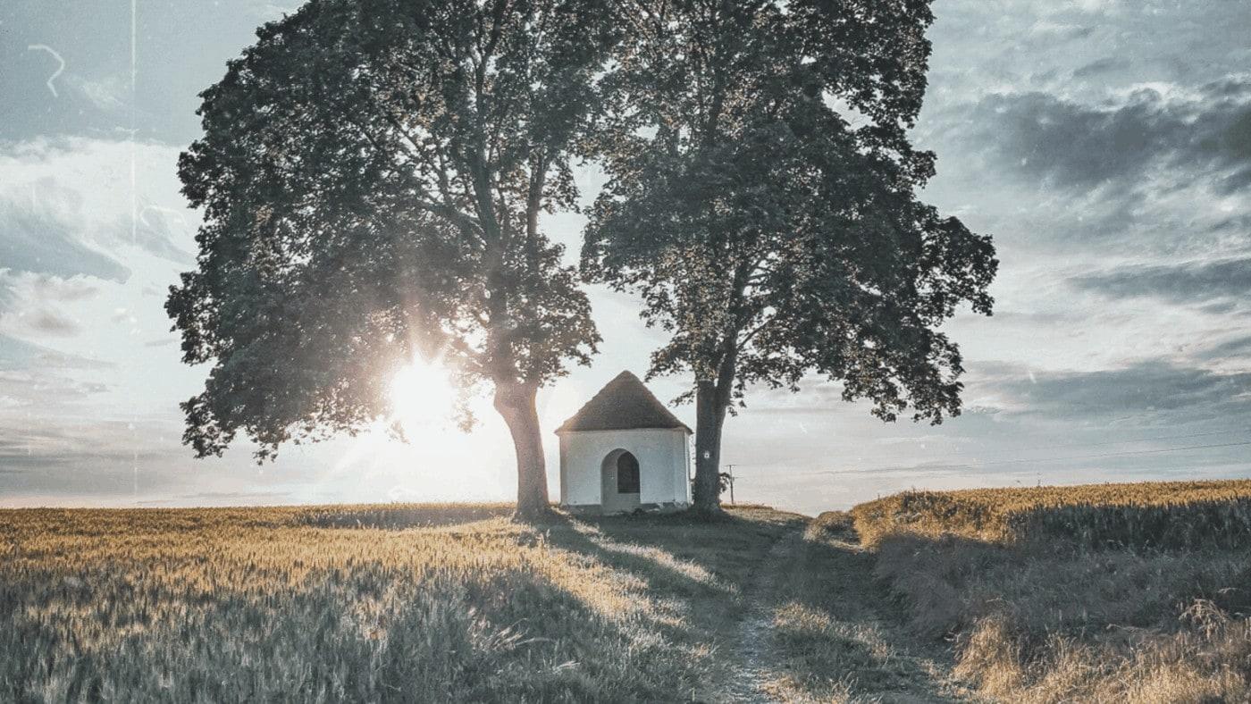 Inspirativní: Jak ustát životní bouři? Mít pevné kořeny a víru v dobré.