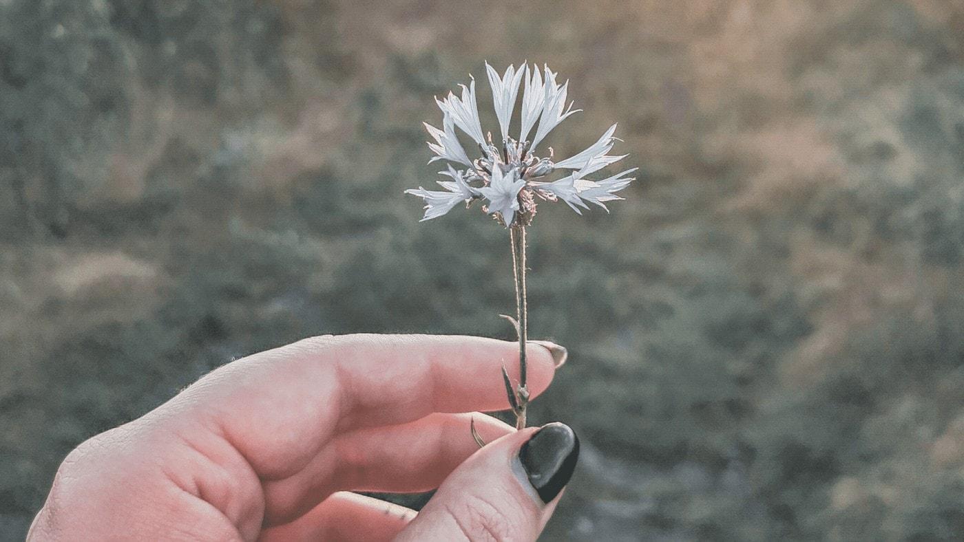 Inspirativní: Jak nežít v depresivním světě, i když nemáš moc na výběr